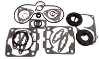 Полный комплект прокладок двигателя снегохода Polaris 600, RMK, SWITCHBACK, TOURING, CLASSIC, 5411465, 5411411, 5811916, 5411359, 5410932, 5811838, 5411394, 09-711251