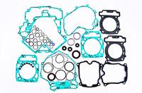 Комплект прокладок двигателя полный (с сальниками) квадроцикла BRP/CanAm Outlander 1000 рама G2 Quadboss 811957/56-4870