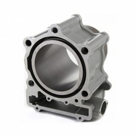 Цилиндр двигателя для Stels Dinli ATV 700D/700GT, E150013A01, E150013B01